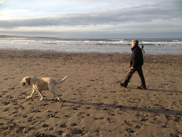 Walks on the beach with the dogs